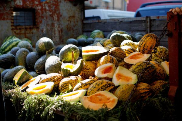 Meloner på vogn i sollys